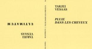 Tarjei Vesaas - Pluie dans les cheveux, Ultimatum