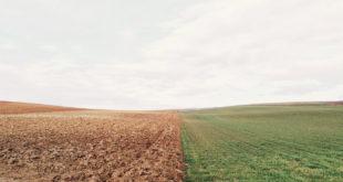 Fabiano Alborghetti – La rive opposée - image de couverture