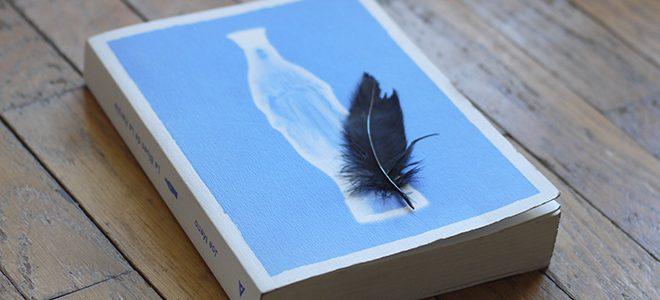 Le Blues de la Harpie de Joe Meno - paru aux éditions Agullo