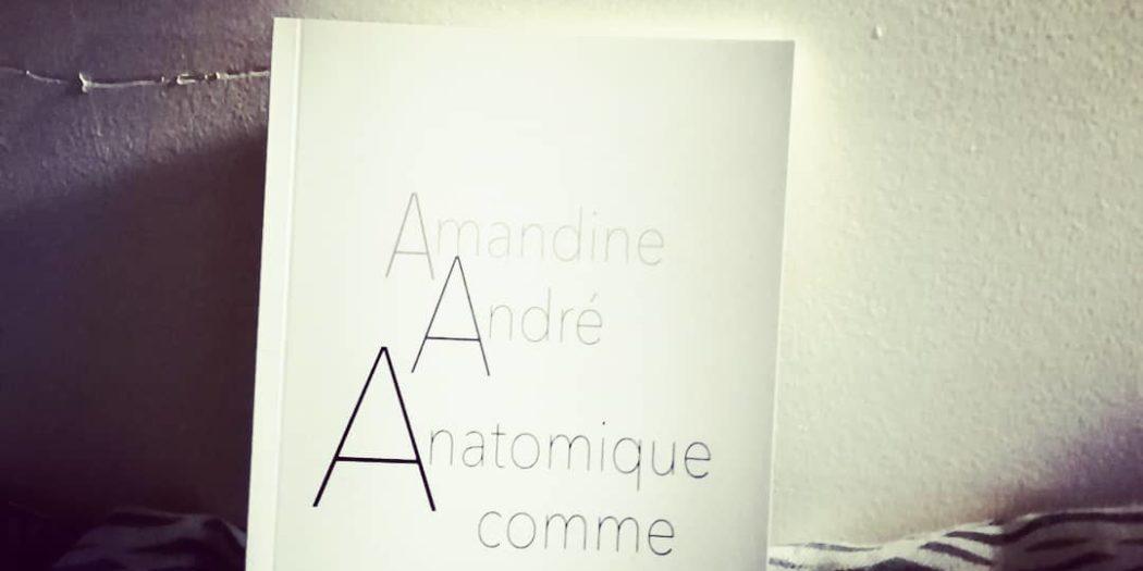 Anatomique comme Amandine André DR