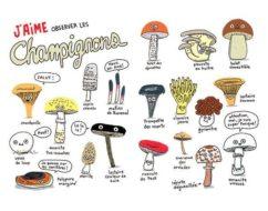 Élise Gravel le fan club des champignons image