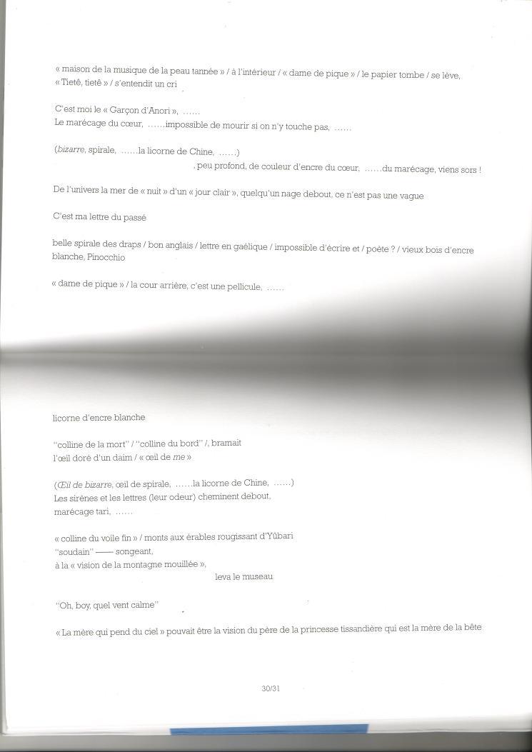 """""""Draps d'Ishikari"""", pages 30-31."""